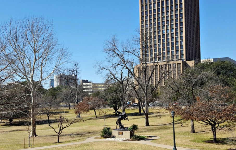 Texas State Capitol Texas cowoboy