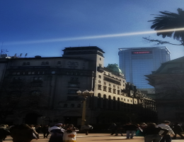Delights and Tribulations of a Flâneuse in Buenos Aires