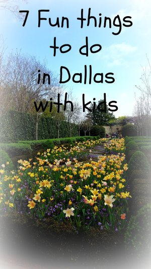 7 fun things to do in Dallas with kids, from interactive science to parks to the Zoo. Don't miss out on the Big D fun for kids! #Dallas #Texas #Dallaswithkids #travel #USA