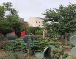 Le Jardin Secret, or Secret Garden, is a beautiful enclosed garden in the middle of the medina in Marrakech restored to its fomer glory #marrakech #Africa